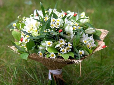 http://alex-flora.com/images/image-16-09-15-09-22-1.jpeg